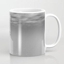 160625-9935 Coffee Mug