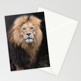 Closeup Portrait of a Male Lion Stationery Cards
