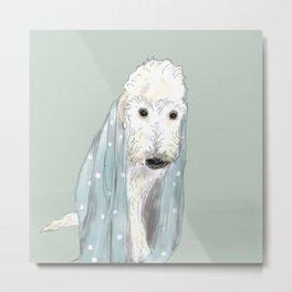 Wet Poodle Metal Print