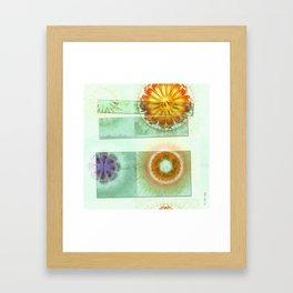 Skedaddle Helpless Flowers  ID:16165-101646-64081 Framed Art Print