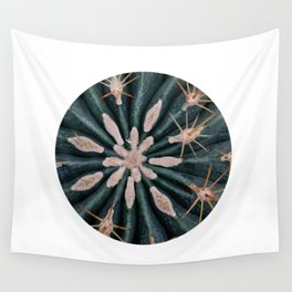 Cactus Plant Close-up Photogrpahy Round Photo Wall Tapestry