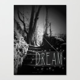 Dream Photography Typography Black and White Stairs Path Forest Canvas Print