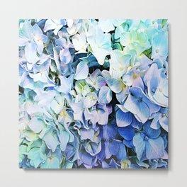Soft Tri-Color Pastel Hydrangea Metal Print