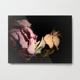 By Any Other Name Metal Print