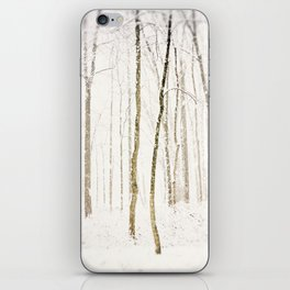 Snowy Trail iPhone Skin