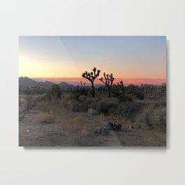 sunset in the desert Metal Print