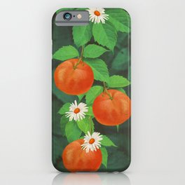 Branch Of Mandarin Orange iPhone Case