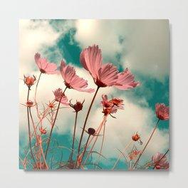 cosmos flowers II Metal Print