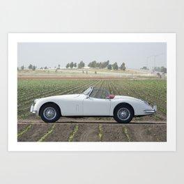 1956 Jaguar XK Art Print