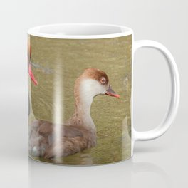 Red-Crested Pochard (Male & Female) Coffee Mug