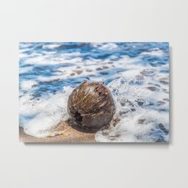 Coconut in the Sea Metal Print