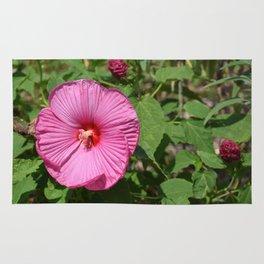 Pink Majesty Rug