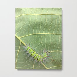 My green friend.  Metal Print