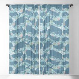 Aquatic Life Sheer Curtain