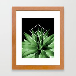 Agave geometrics III Framed Art Print