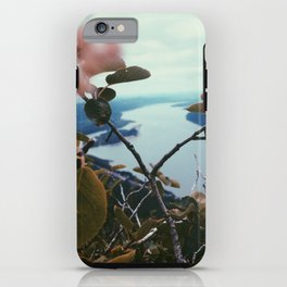 Columbia River Gorge iPhone Case