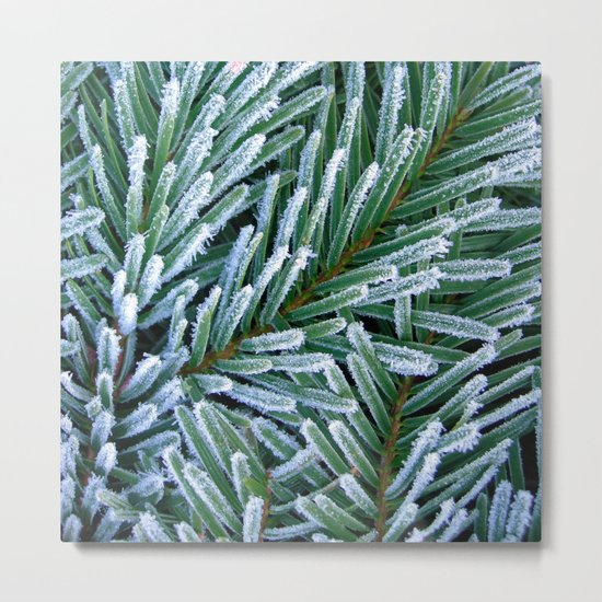 cold winter IV Metal Print