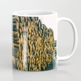 Poltery Site (Wood Storage Area) After Storm Victoria Möhne Forest 4 Coffee Mug