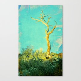 And still I stand Canvas Print