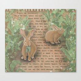 Rabbits 1 Canvas Print