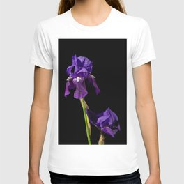 Iris on Black Nature / Floral / Botanical Photograph T-shirt