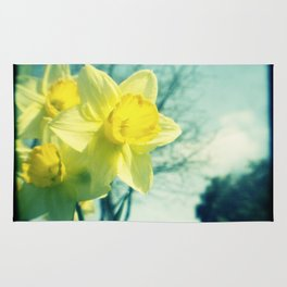 Daffodils Rug