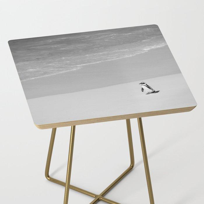 Lone African Penguin walking on beach Side Table