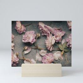 Dusty Pink Roses Mini Art Print