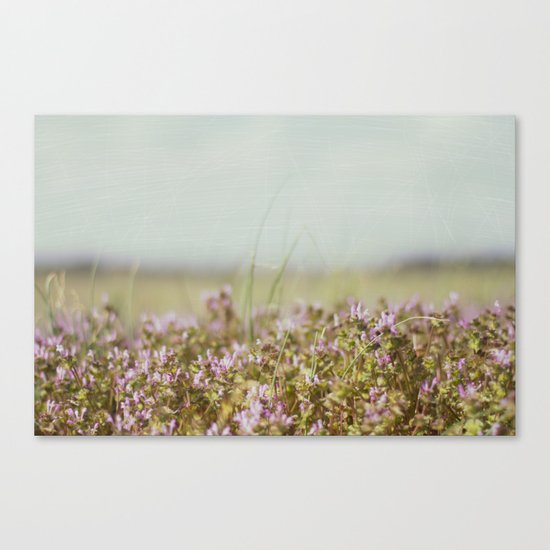 From the Ground Up Canvas Print