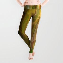 Idea For A Gracious Dress Leggings