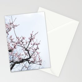 PLUM BLOSSOMS Edition04 Stationery Cards