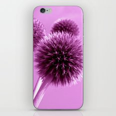 purple globe thistle II iPhone & iPod Skin