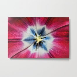 Burgundy Tulip centre Metal Print