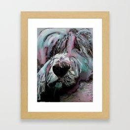 Tibetan Terrier Up Close And Personal Framed Art Print