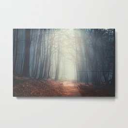 the quiet path Metal Print