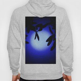 Does That Blue Moon Ever Shine on You Hoody