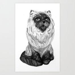 Mister Meow Art Print
