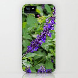Indifference in Purple iPhone Case