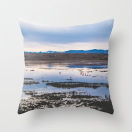 Flamingoes on El Calafate, Patagonia, Argentina 2 Throw Pillow
