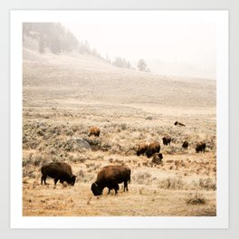 A Snow Storm Blowing In Art Print