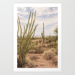 Down Desert Roads, V Art Print