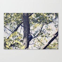 Little Tree Hugger Canvas Print