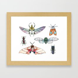 Bugged Out Framed Art Print