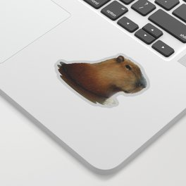 Capybara Springs Sticker