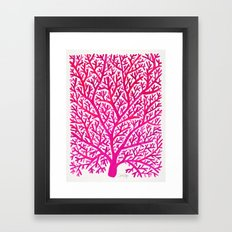 Fan Coral – Pink Ombré Framed Art Print