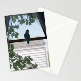 Alone on the Window Sill Stationery Cards