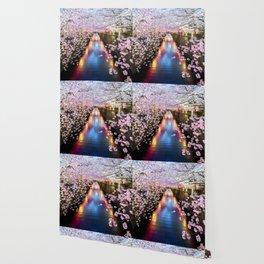Cherry Blossom in pink   Japan Nakameguro River Wallpaper