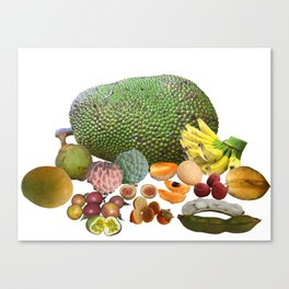 Exotic Fruit Canvas Print