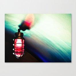 Night Vision Canvas Print