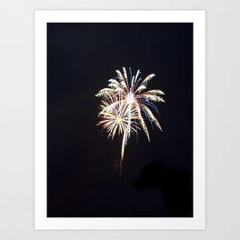 Fireworks on the Fourth Art Print